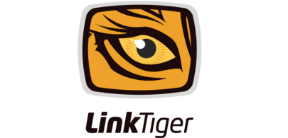 Linktiger used Redwerk's Node.js outsourcing services for development broken links checking tool
