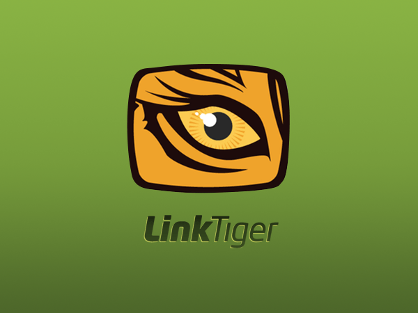 Linktiger: SaaS broken links checking tool developed by Redwerk's dedicated offshore developers
