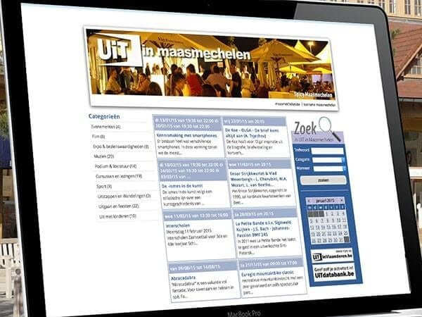IT outsourcing case study - Maasmechelen's website / Redwerk company